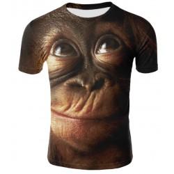 Tee Shirt Singe